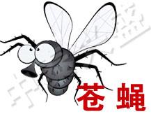 【除虫公司】中泰兴盛