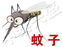 【北京杀虫公司】中泰兴盛