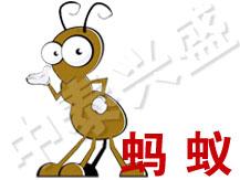 【北京灭虫公司】中泰兴盛